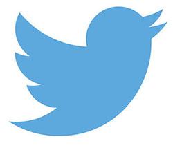 logo oficial twitter